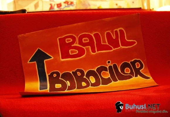 Balul Bobocilor 2014 - 24 octombrie, ora 16, Sala Polivalentă