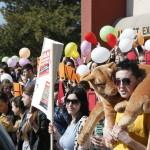 Marş de  protest internațional |   Încetaţi a mai fi proxeneţii comunităţii vânătoreşti!