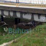 EXCLUSIV: Cadavrul unui buhușean de 25 de ani găsit sub un pod