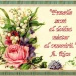8 Martie – Viața prin iubire și dăruire