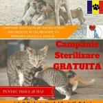O nouă campanie de sterilizare în perioada 26-28 mai
